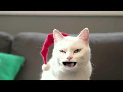 Sắp tới giáng sinh, em xim làm một bài