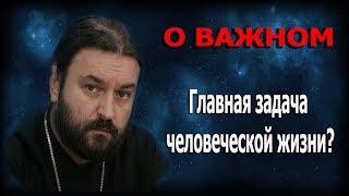 Когда голова находится на месте головы! Протоиерей Андрей Ткачёв