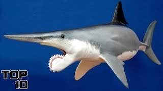 Top 10 Prehistoric Creatures Recently Discovered