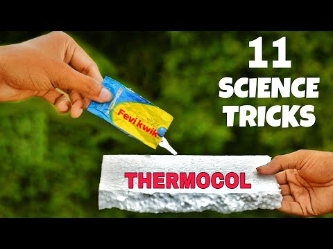 11 Simple Science Experiments To Do At Home