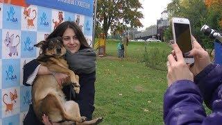 В честь Всемирного дня защиты животных в Минске прошла благотворительная акция «Дорога домой!»
