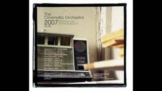 Cinematic Orchestra - As The Stars Fall - live