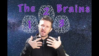 What are the 3 Brains? Good News for the Week - July 17th
