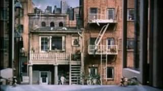 Rear Window Movie