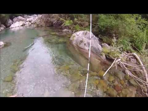 La Kamchatka ha relazione la pesca