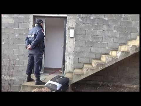 Svrljižanina sa poternice žena upucala, pa pred policijom napala samostrelom