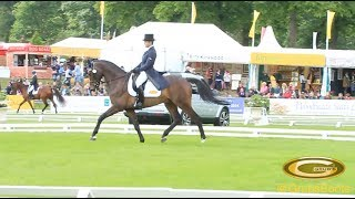 Elite Eventing | Bramham 2014 CCI*** Dressage Day