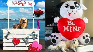 Puppy Valentine's Day Kissing Booth (SCS #182)