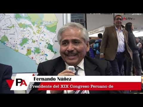Fernando Núñez - Presidente del XIX Congreso de Geología