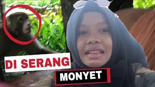 DI SERANG MONYET DI CINA!! part2 - FATIMVLOG14