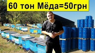 60 тон Мёда 🍯 за 50 грн/кг, состояние медового рынка ✅  Sale of honey in Ukraine for beekeepers