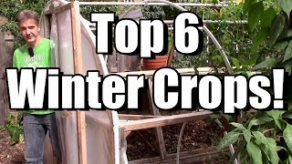 My Top 6 Crops for the Winter Garden!
