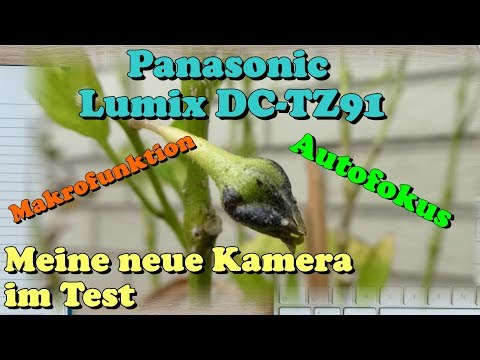 Panasonic Lumix DC-TZ91 Kompakt Digitalkamera im Test | Test Video | Makro Funktion & Autofokus