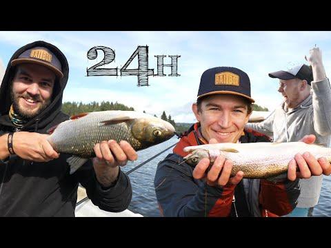 Artsfiskeri i Sverige
