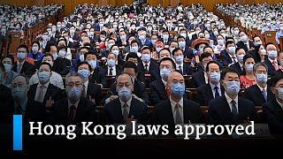 Chinas NPC Approves New Hong Kong Laws | DW News