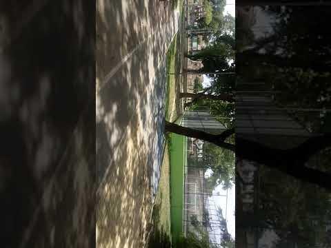 Área Verde na Vila Cardeal em Areias - Recife.