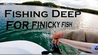 Working to Find FISH - Speckled Trout Fishing Catch + Cook ft. How To