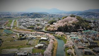 ドローン空撮三室山と竜田川の春奈良県斑鳩町MavicAir,FHD