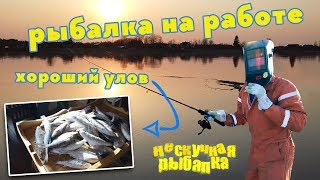 Река паша ленинградской области рыбалка тихвин
