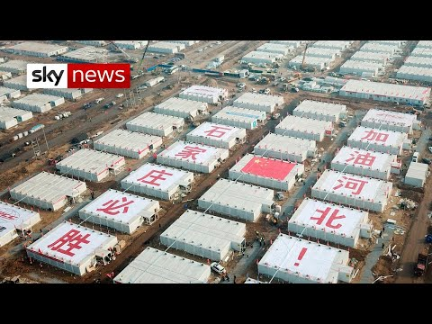 COVID-19: China attempts to limit outbreak with strict controls
