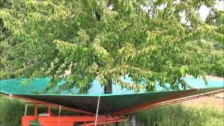 Multione Harvester - Tree Shaker - Most Popular Videos