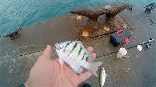 Рыбалка с пирса на черном море