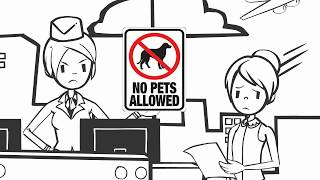 Emotional Support Animal: How To Get One (100% LEGAL and COMPLIANT)