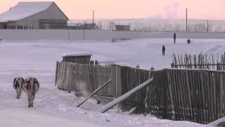 My lovely Village (Republic Sakha (Yakutia)) Outdoor -42C or -43C.