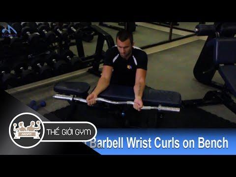 Hướng dẫn tập Cẳng Tay: Cuốn tạ đòn trên ghế - Palms Up Barbell Wrist Curl