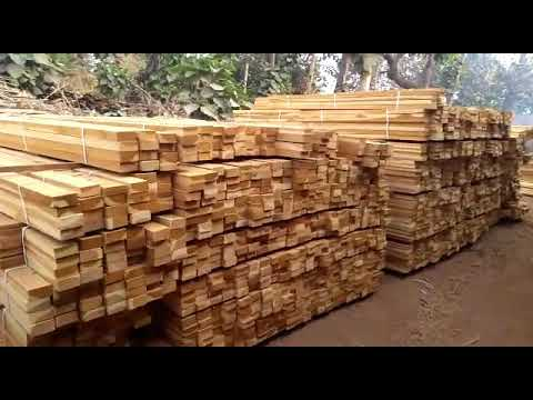 Teak Wood Teak Timber Latest Price Manufacturers Suppliers