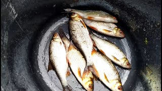 Рыбалка в вырице на реке оредеж