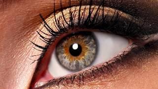 Интересные факты о нашем теле - Глаза и Зрение.