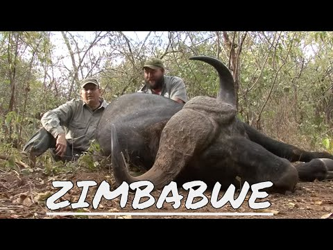 Gary Buffalo Hunt in Zimbabwe 2014