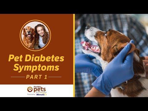 Bluttests für Zucker Glukose