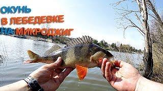 Голубой канал отчеты о рыбалке обводной