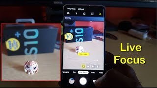 How to take Live Focus Pictures with Blurred Background Galaxy S10/S10 Plus/S10e