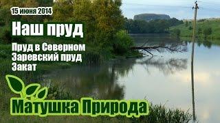 Рыбалка в серебряные пруды московская область поселок