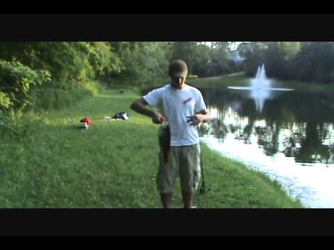 3.5 lb Largemouth and more Bass Fishing in Ohio Pond
