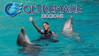 La Laguna Dei Delfini   Lo Spettacolo Della Natura   OLTREMARE