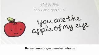 Hu Xia - Na Xie Nian ( Terjemahan ) Ost : You Are The Apple Of My Eye