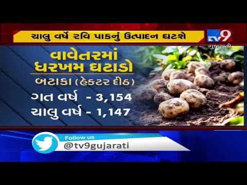 Farmers distraught as unseasonal rain hits crops | Tv9GujaratiNews