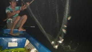 Trúng mánh trời hừng sáng... Trời vừa sáng đi bán cá luôn | Săn bắt SÓC TRĂNG |