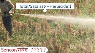 Total Sata sat Herbicide