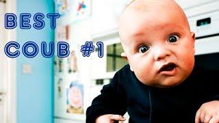 BESTCOUB #1.  Лучшее видео за неделю (Июнь).