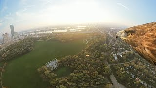 Vienna from an eagles eye view-360° (long)