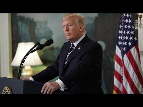 Trump delivers statement on midterm election results