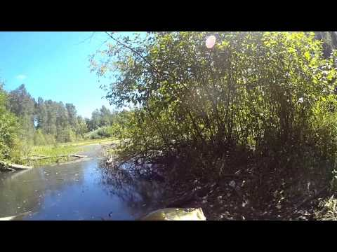 Secret Pond Bass Fishing in Washington State
