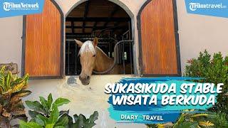 Diary Travel: Wisata Berkuda di Wilayah Solo, Bisa Mampir ke Sukasikuda Stable