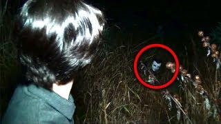 11 Scary Forest Encounters Caught By YouTubers