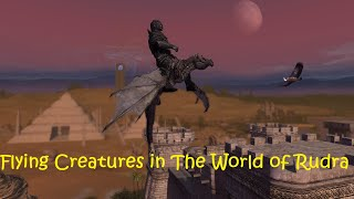 Flying Creatures in The World of Rudra 1